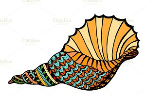 Seashell. Vector illustration.