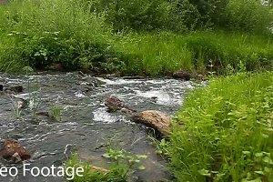 River landscape.