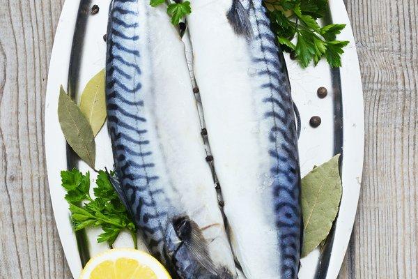 Mackerels fresh