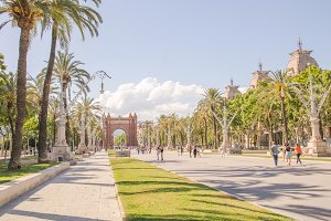 Palm trees on the boulevard in Barcelona