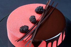 Contemporary Mousse Cake