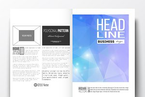 Bundle of 50 brochure templates