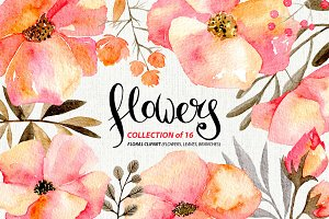 Gentle watercolor flowers, 16 png