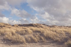 Sunny Beach with sandy Dunes
