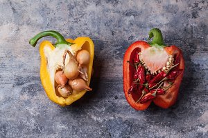 Stuffed red and yellow paprika