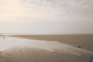 Nordic Beach in Soft Light (Vintage)