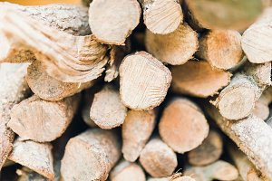 Long stack of firewood with focus on the nearest logs