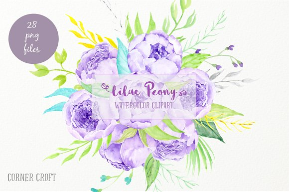 Watercolor Clipart Lilac Peony ~ Illustrations on Creative Market