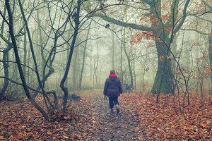 Walking in the foggy woodland