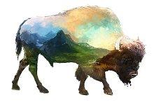 Double exposure set   Bison