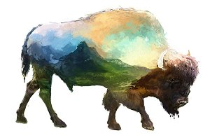 Double exposure set | Bison