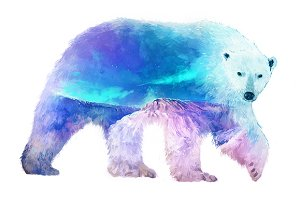 Double exposure set | Polar bear