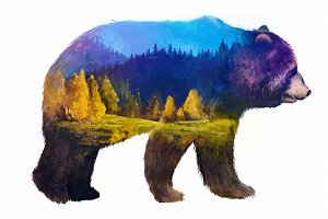Double exposure set | Bear grizzly