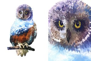 Double exposure set | Owl