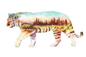 Double exposure set | Tiger