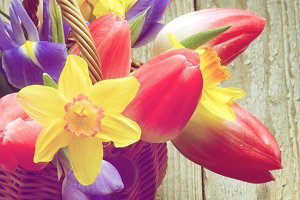 Retro Easter Theme
