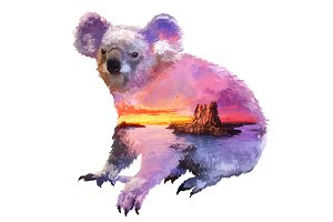 Double exposure set | Koala
