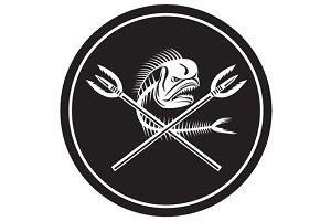 Skull Mahi Mahi Dolphin Fish