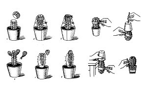 Houseplants Hand drawn sketch set