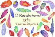 Watercolor hand drawn feathers set