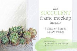 Succulent frame mockup bundle 001