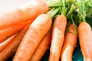 Fresh carrots on dark green
