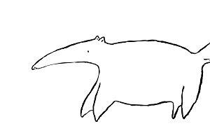 Anteater sketch