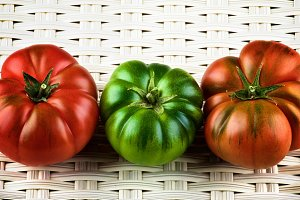 Multicolored Raw Tomatoes