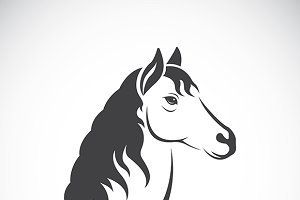 Vector image of an horse haed design