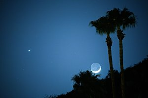 Luna and the Evening Star