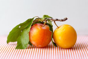 Orange plum on table