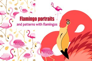 Flamingo patterns and portraits