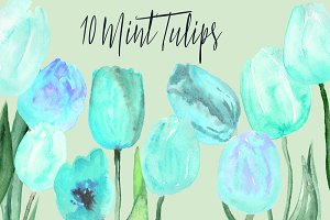 10 Watercolor Mint Tulips Clip Art