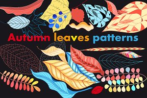 Multi-colored autumn leaves pattern
