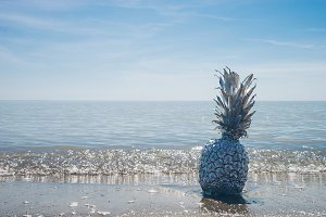Silver Pineapple on Shore with Wave