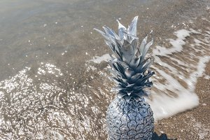 Silver Pineapple Standing on Shore