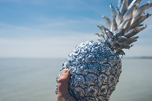 Holding a Silver Pineapple