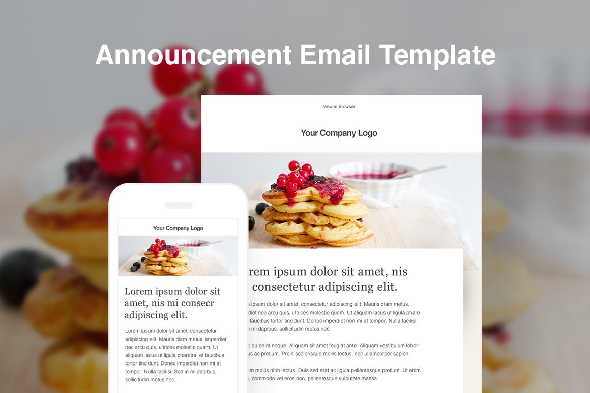 Responsive HTML Blog Email Template Email Templates Creative Market - Announcement email template