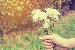 White flowers for gift.
