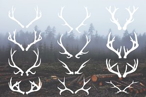 Deer Antlers - 12 Hand Drawn Vectors