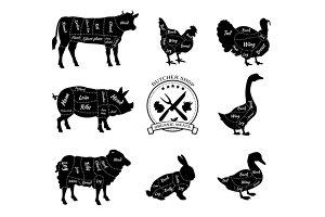 Animals for Butcher Shop