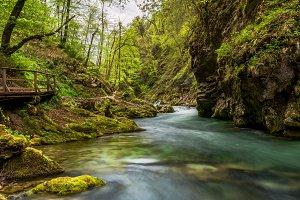 Vintgar gorge in early spring