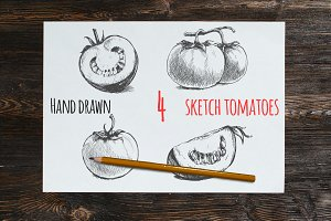 Hand drawn illustrations of tomatoes