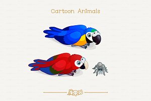 ♥ vector Spider and macaws