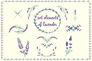 Set elements of lavender branches