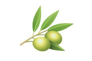 Olive's branch set