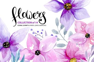 Watercolor purple & pink flowers