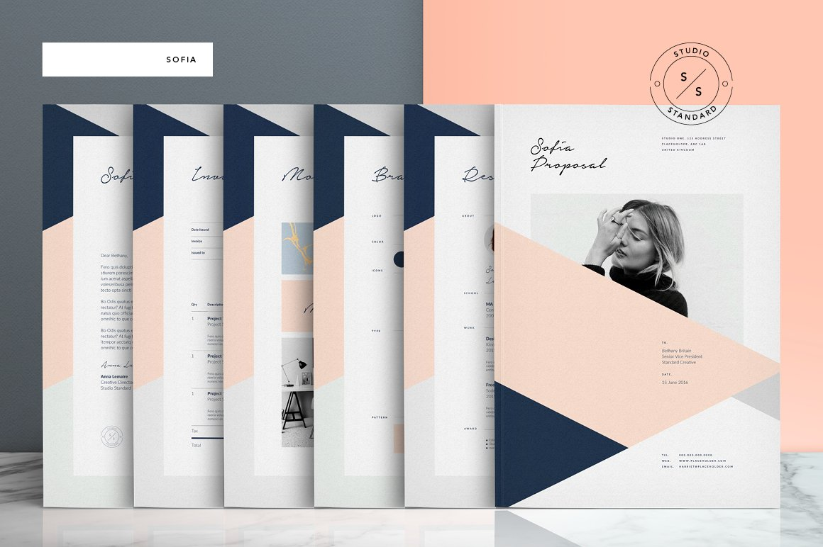Sofia Pitch Pack ~ Brochure Templates ~ Creative Market