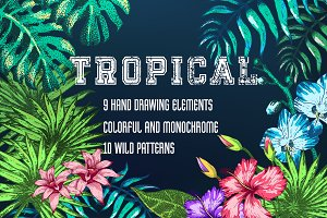 Tropical Plants and Patterns