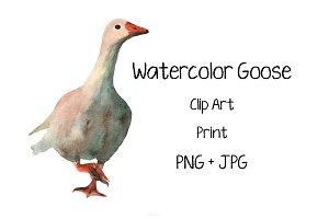 Watercolor Goose - Clip Art - Print